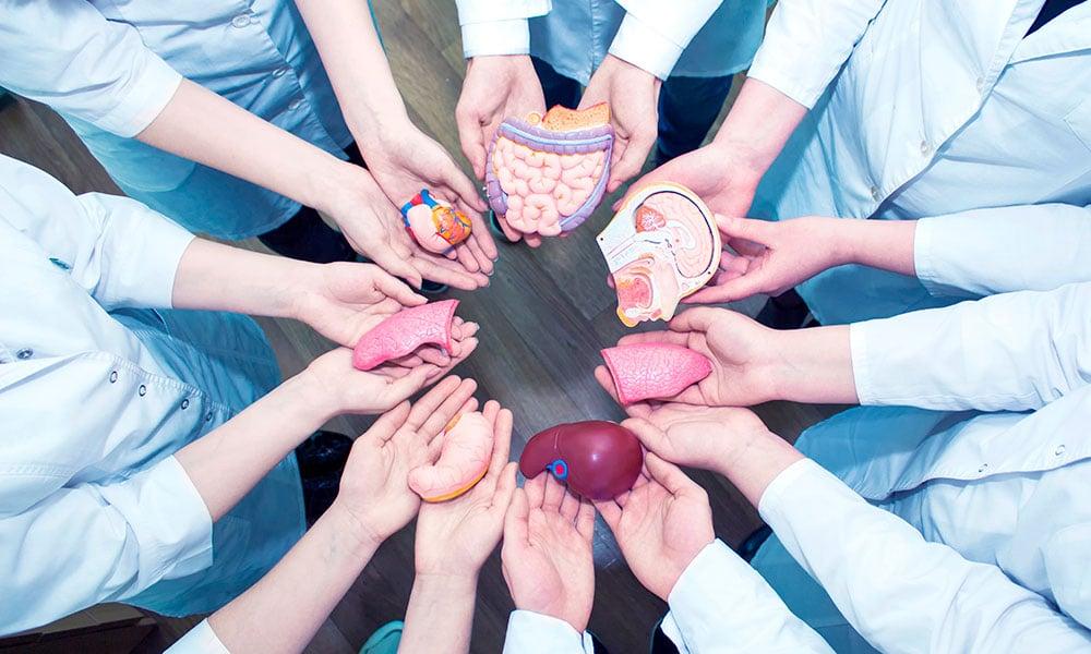 Enfermera premiada por su trabajo sobre atención al paciente en trasplante de donante vivo